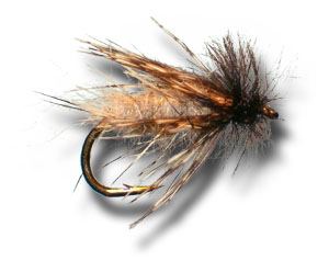 Peeking Caddis - Cream