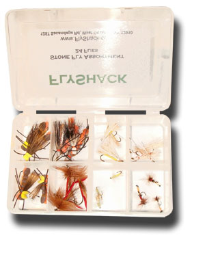 Stone Fly Assortment - 24 Flies