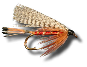 fly fishing flies - abbey wet fly, Fly Fishing Bait