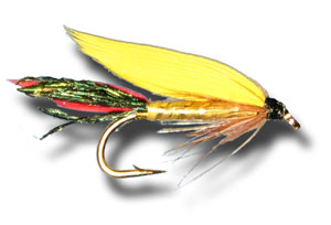 Cassin Wet Fly