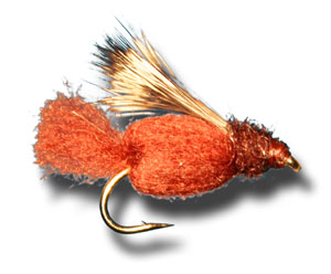 Sparkle Caddis Pupa - Brown
