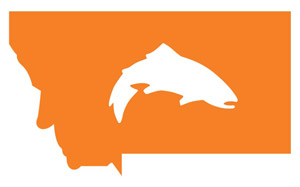 Simms Montana Orange Trout Decal